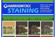 Stain Color Options